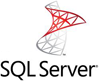 SQL Server Security  Logo