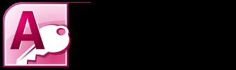 Access für Controller (große Datenmengen/Reporting) Logo