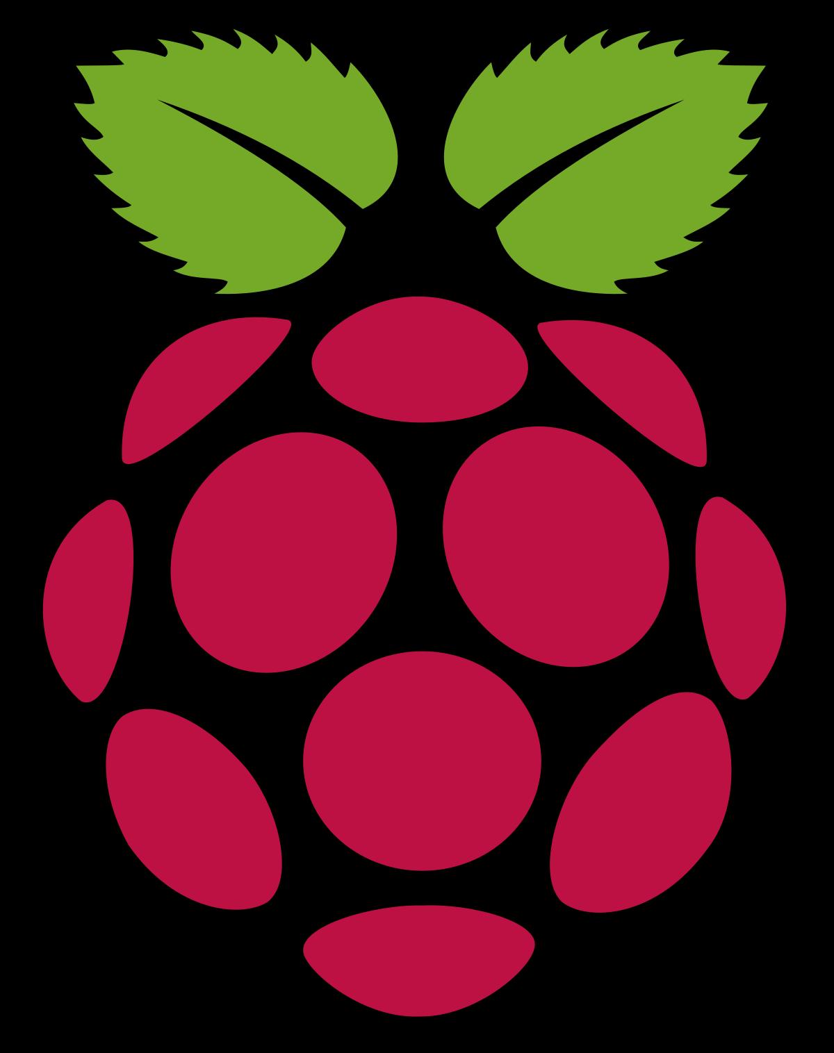 Programmieren lernen mit dem Raspberry Pi Logo