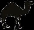 Perl Komplett: Grundlagen und Fortgeschrittene Techniken für Entwickler Logo